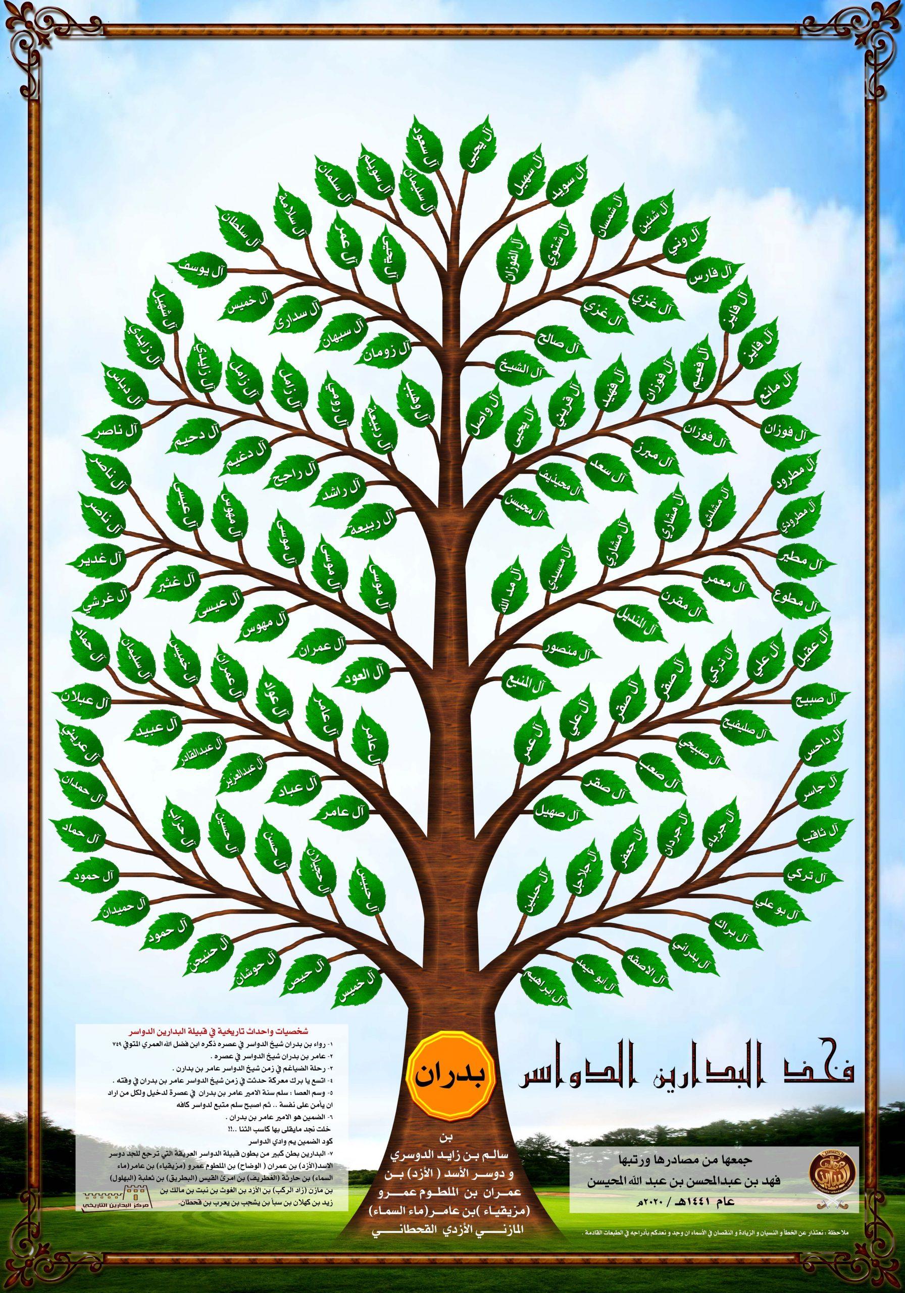 شجرة البدارين الدواسر
